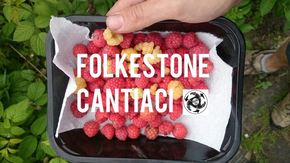 Folkestone, Folkestone Cantiaci, Cantiaci, Transition Town, Community