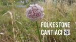 Folkestone, Cantiaci, Folkestone Cantiaci, Transition Town,