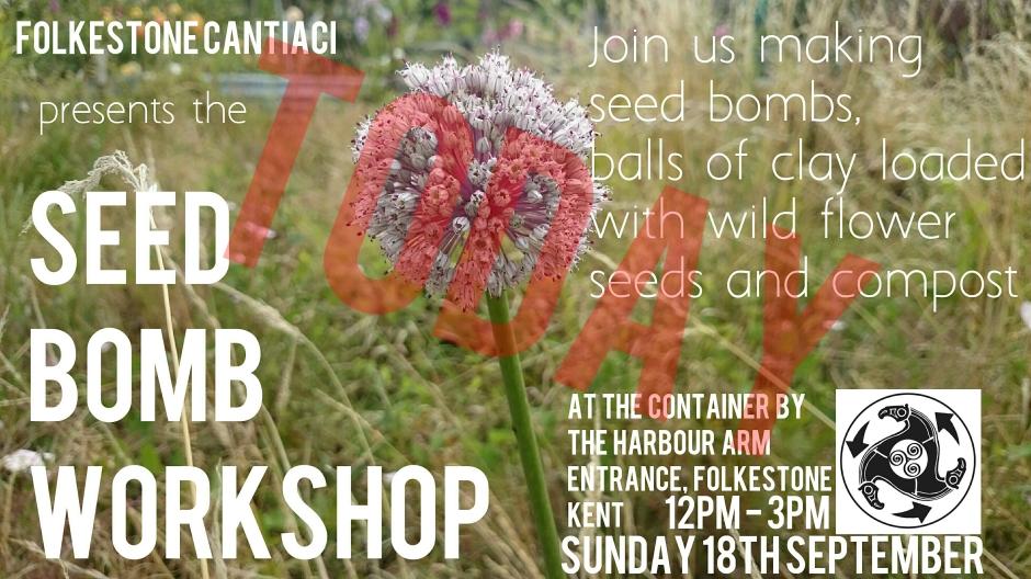 Folkestone, Cantiaci, Transition Town, Community, Folkestone Cantiaci, Seedbomb, Seed Bomb, Workshop, Harbour Arm