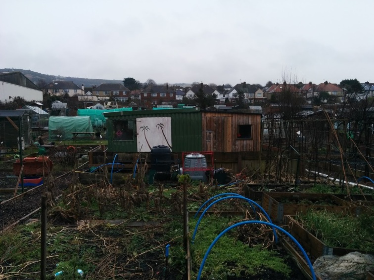 park-farm-allotments-006